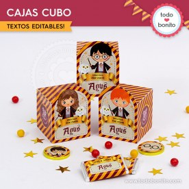 Harry Potter: cajita cubo